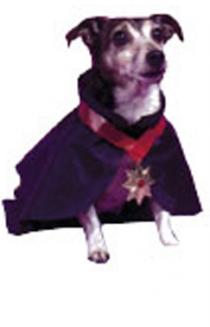 dracula pet costume